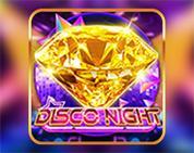 Disco Night