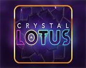 Crystal Lotus